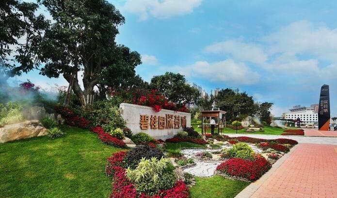 碧桂园·深荟城实景图