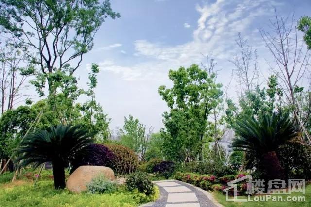 湖海塘公园实景图