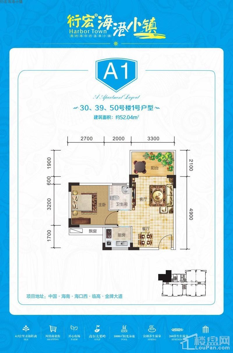 衍宏海港小镇A1户型图