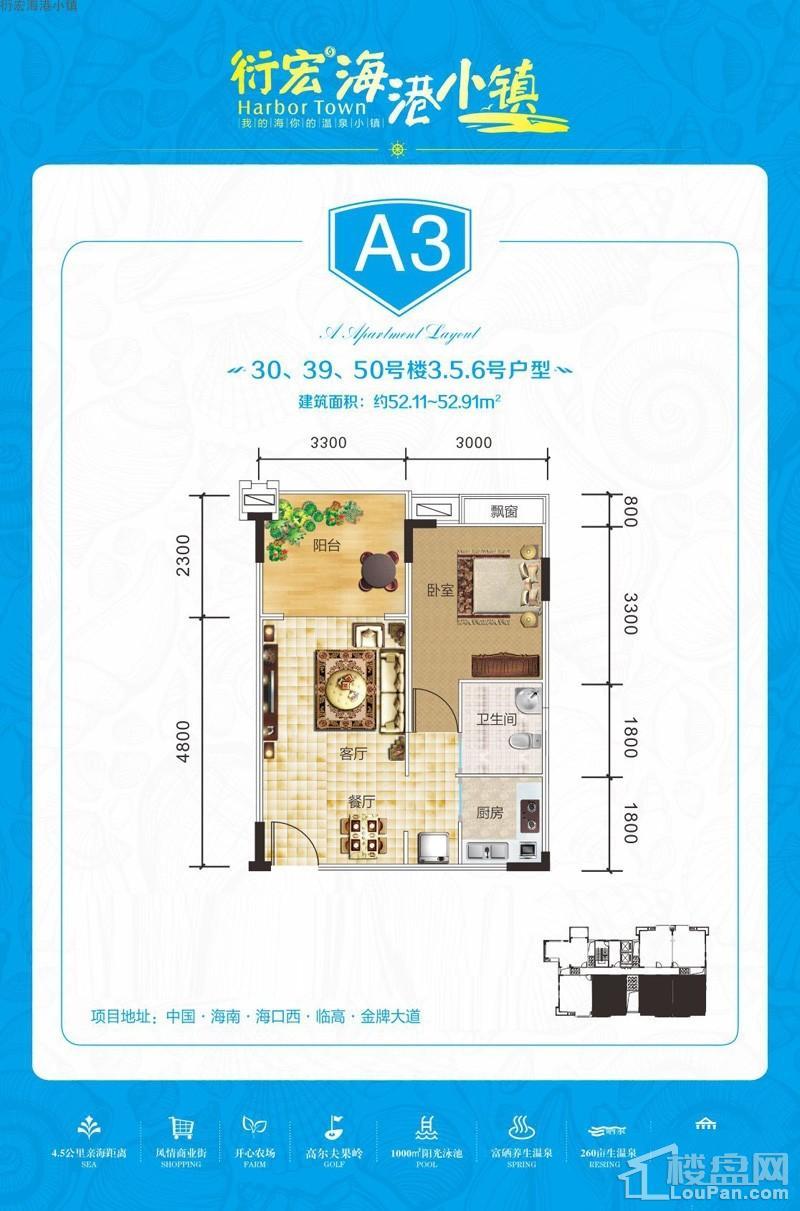 衍宏海港小镇A3户型图