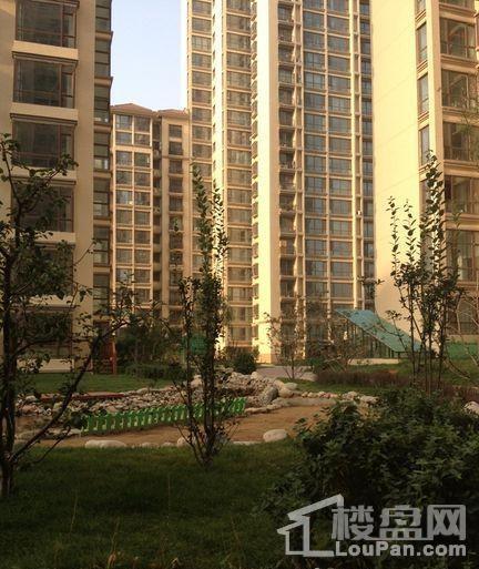 府东·公园6栋商铺实景图