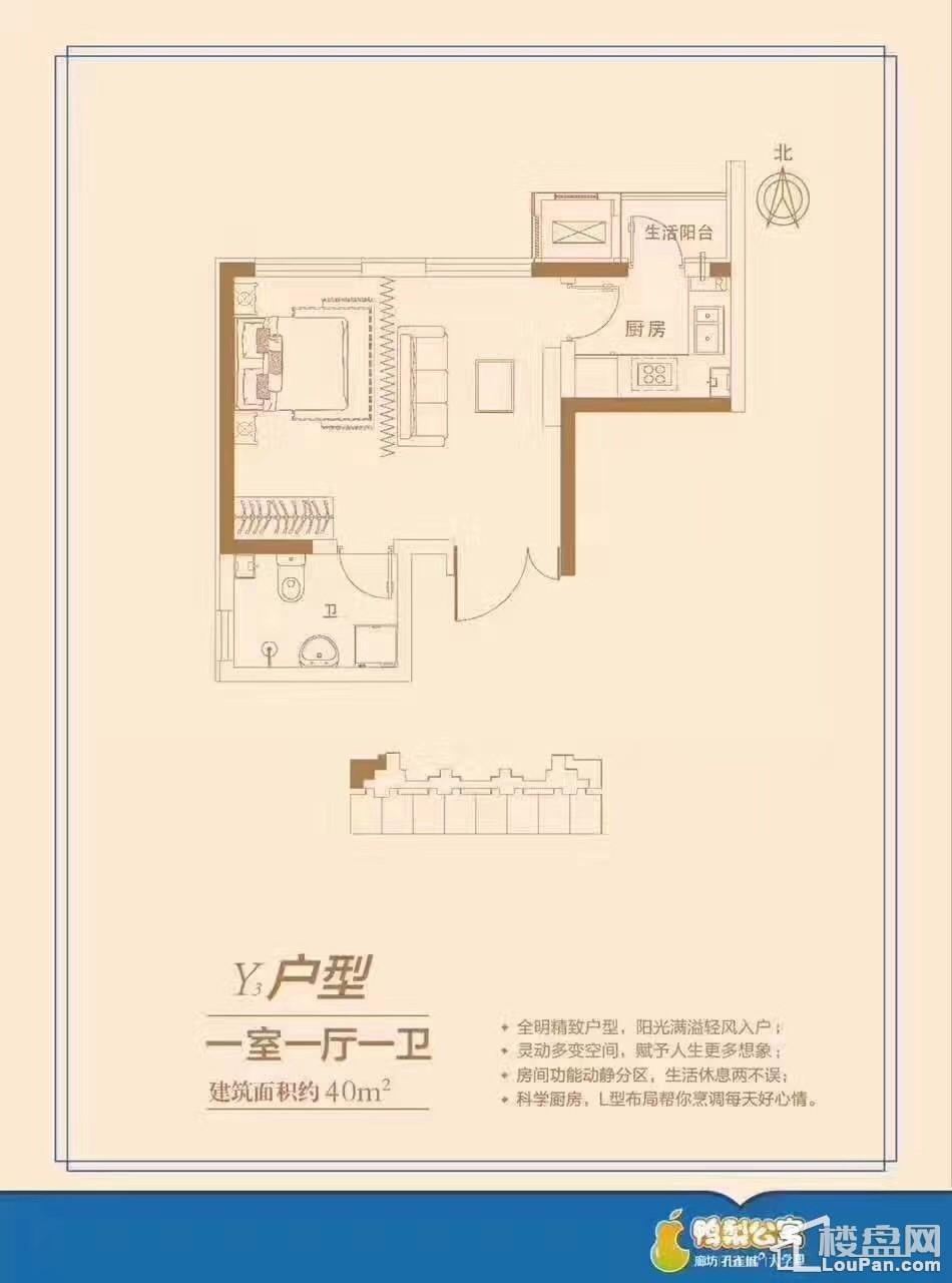 孔雀城鸭梨公寓户型图