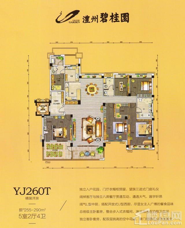 澧州碧桂园一期YJ260T户型图
