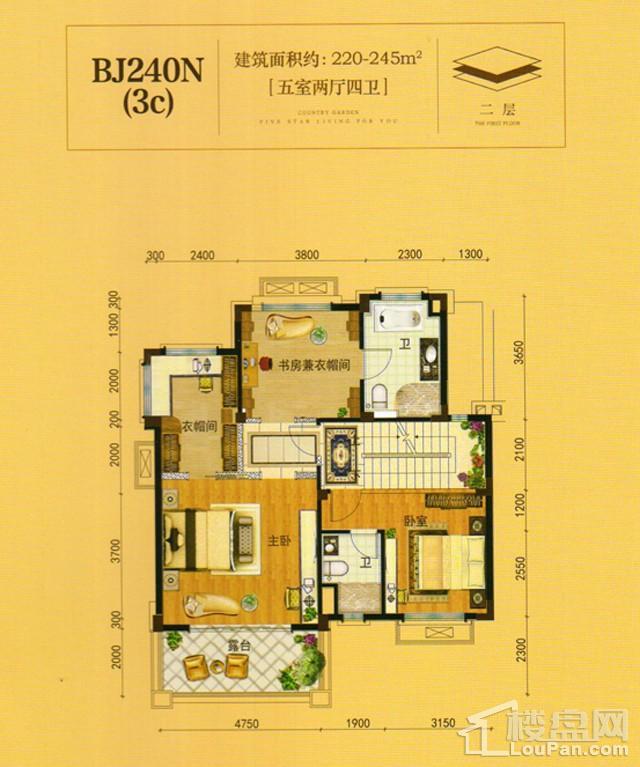 澧州碧桂园一期BJ240N(3C)二层户型图