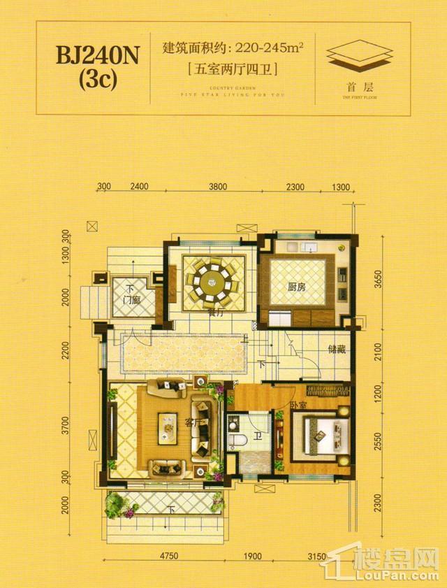 澧州碧桂园一期BJ240N(3C)首层户型图