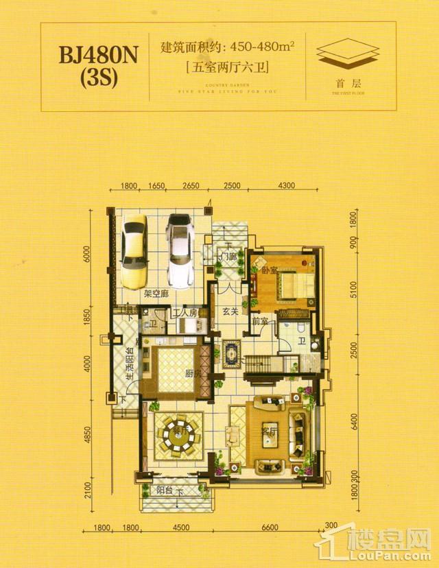 澧州碧桂园一期BJ480N(3S)首层户型图