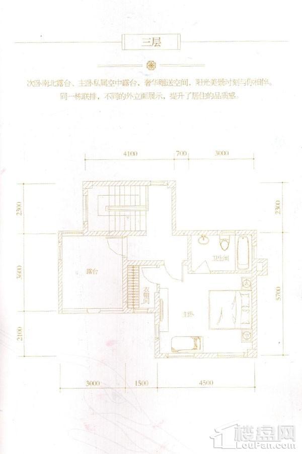 D1s/D2s户型(三层)