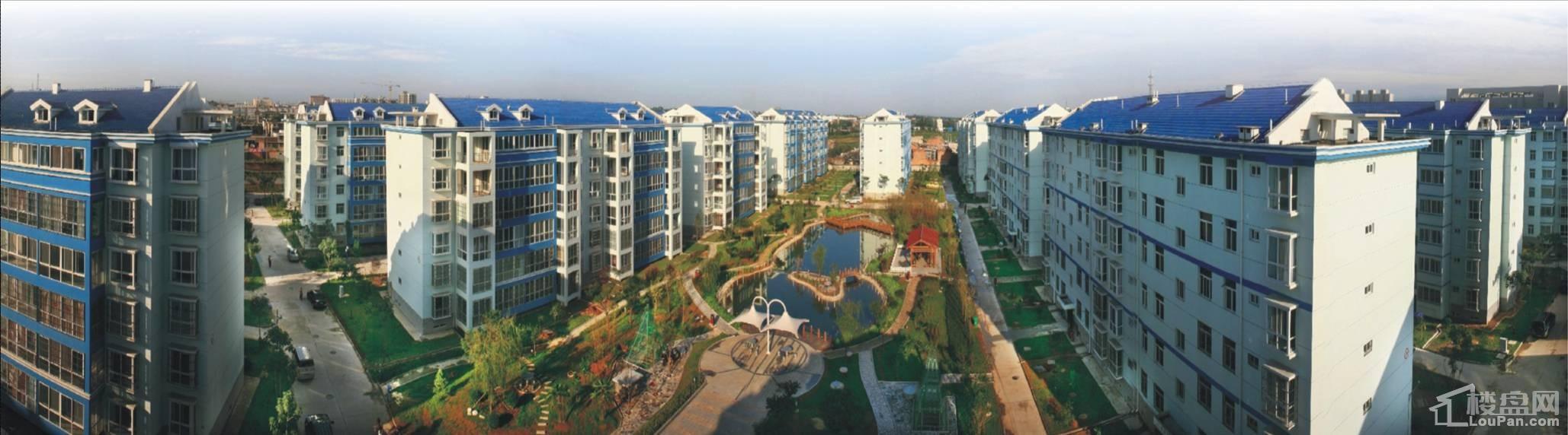杨凌化建家园高层实景图
