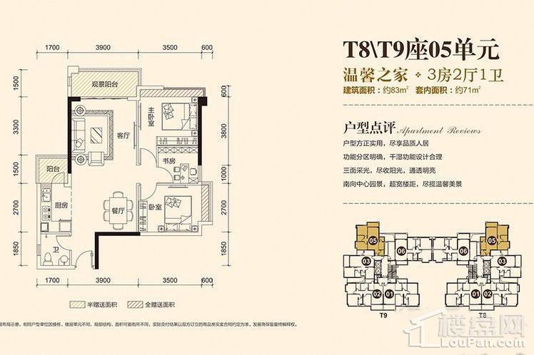 T8T9座05单