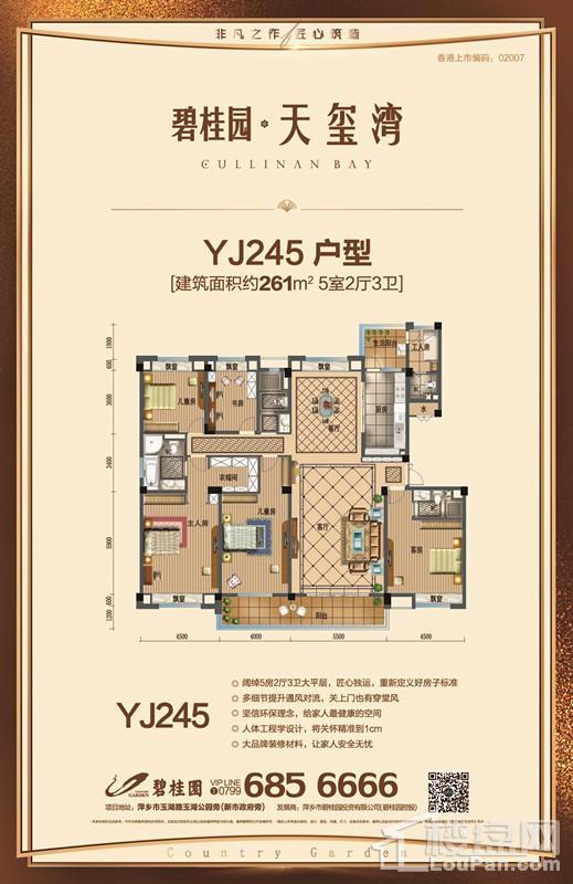 YJ245户型