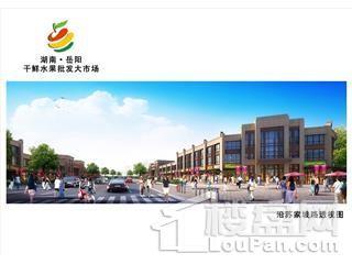 湖南岳阳干鲜水果批发大市场效果图