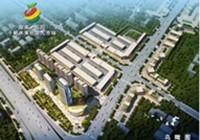 湖南岳阳干鲜水果批发大市场