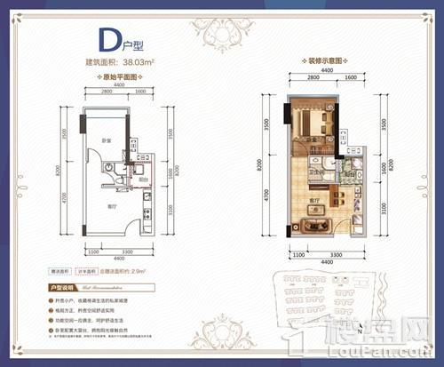 D户型公寓
