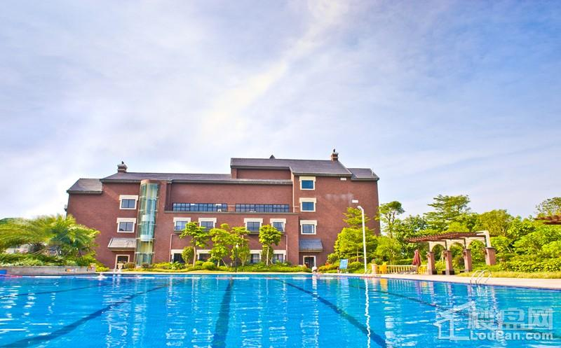中庭景观游泳池