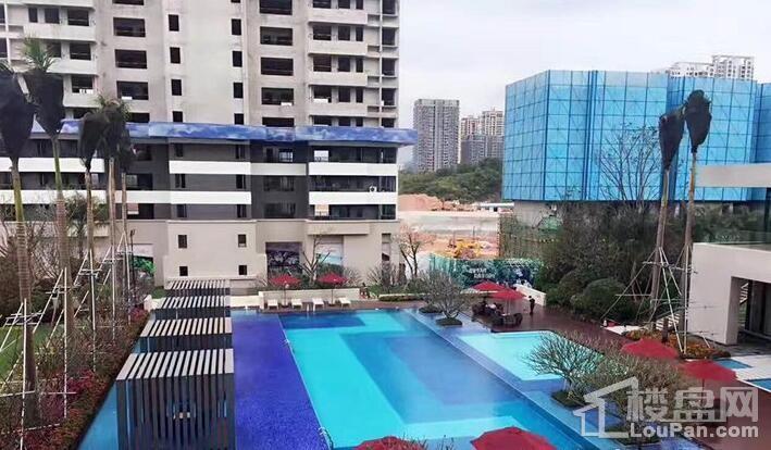 新力东园实景图