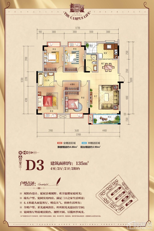 洋房标准层-D3