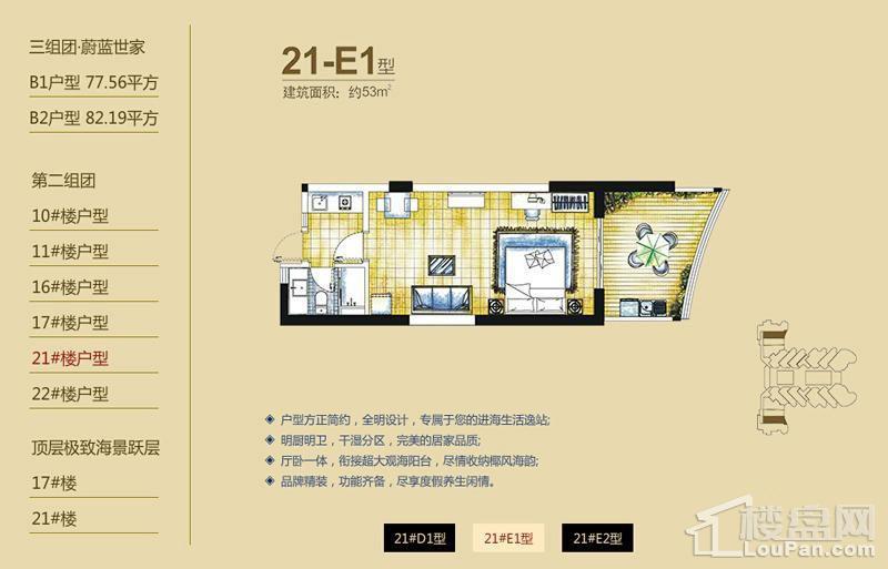 逸龙湾二组团21#楼21-E1户型