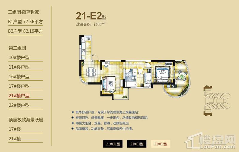 逸龙湾二组团21#楼E2户型