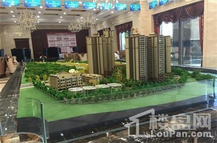 龙锦湾实景图