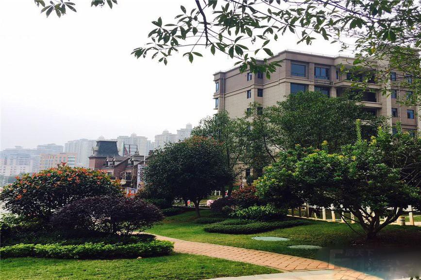 连州碧桂园户型图