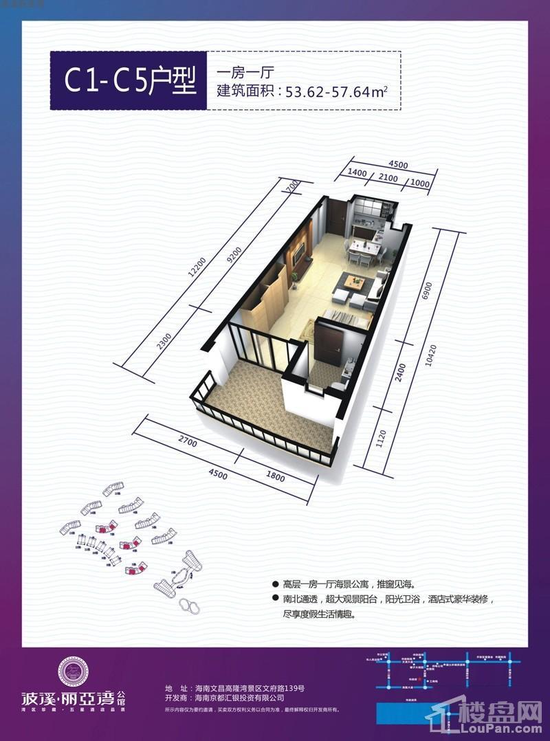 波溪丽亚湾C1-C5户型图