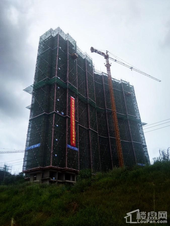 项目建设进度(摄于2017.8.9)