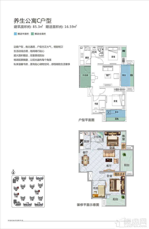 亚洲湾养生公寓C户型