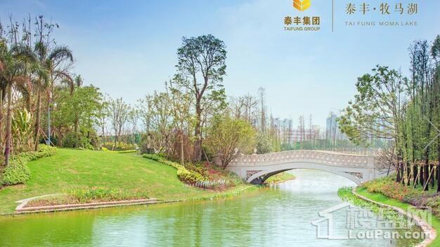 泰丰牧马湖实景图