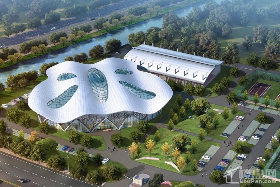 红塔体育中心