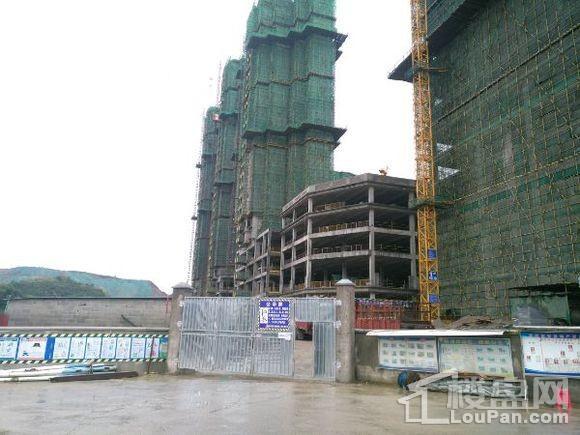 锦·花溪实景图