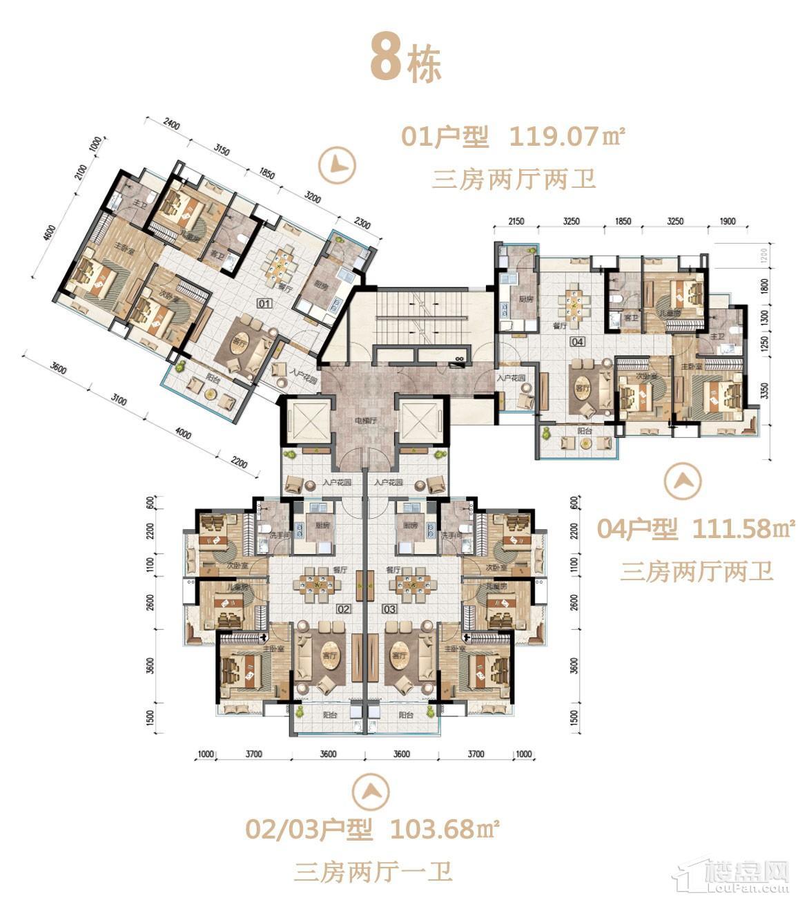 沙湖绿洲8栋户型图