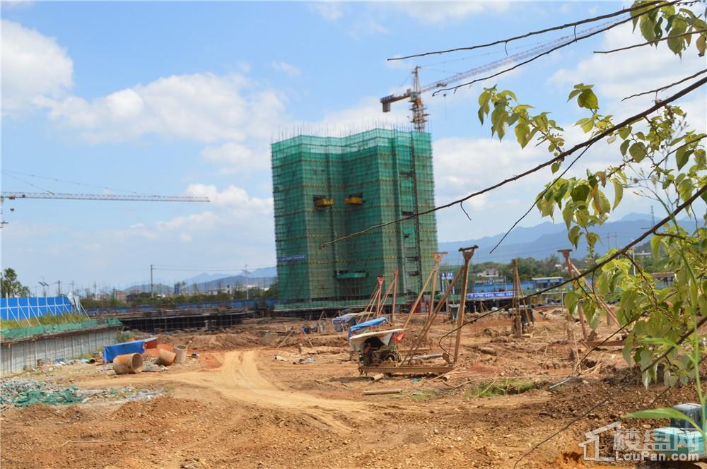 中源国际城5栋施工动态