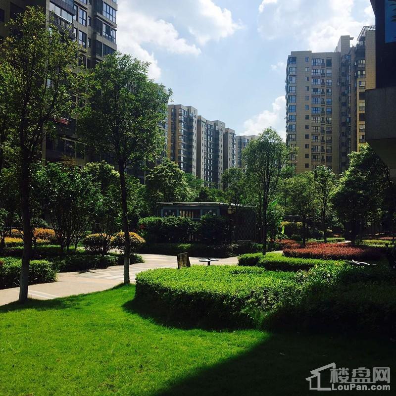 城北地产·天虹广场实景图