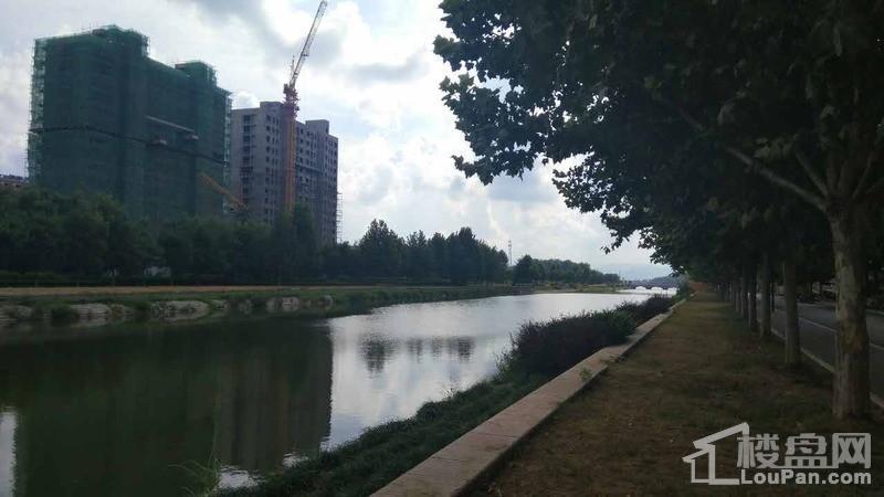 水景绿城实景图