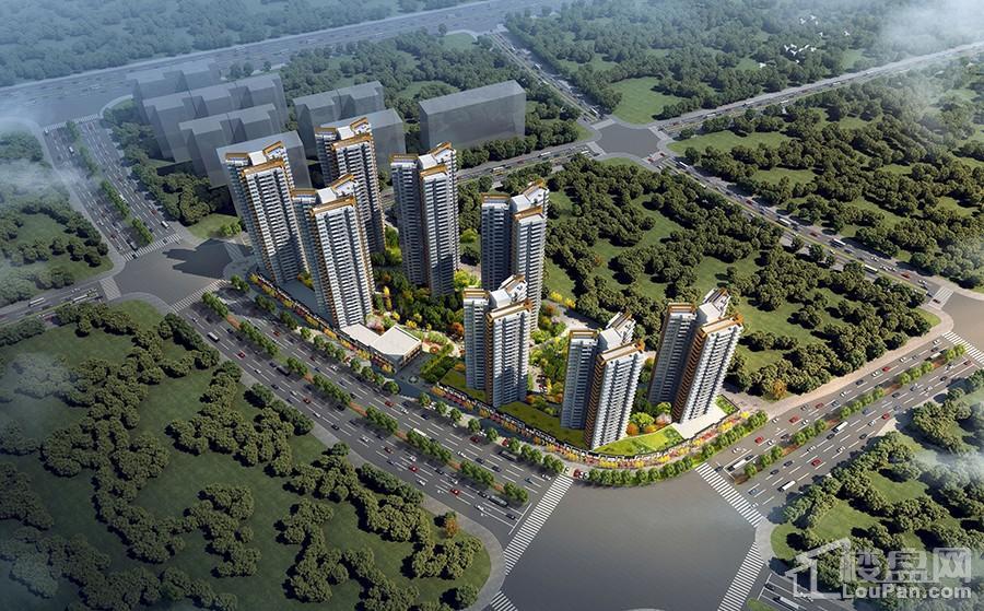 中昂国汇楼栋鸟瞰图