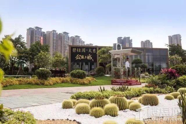 碧桂园太东公园上城实景图