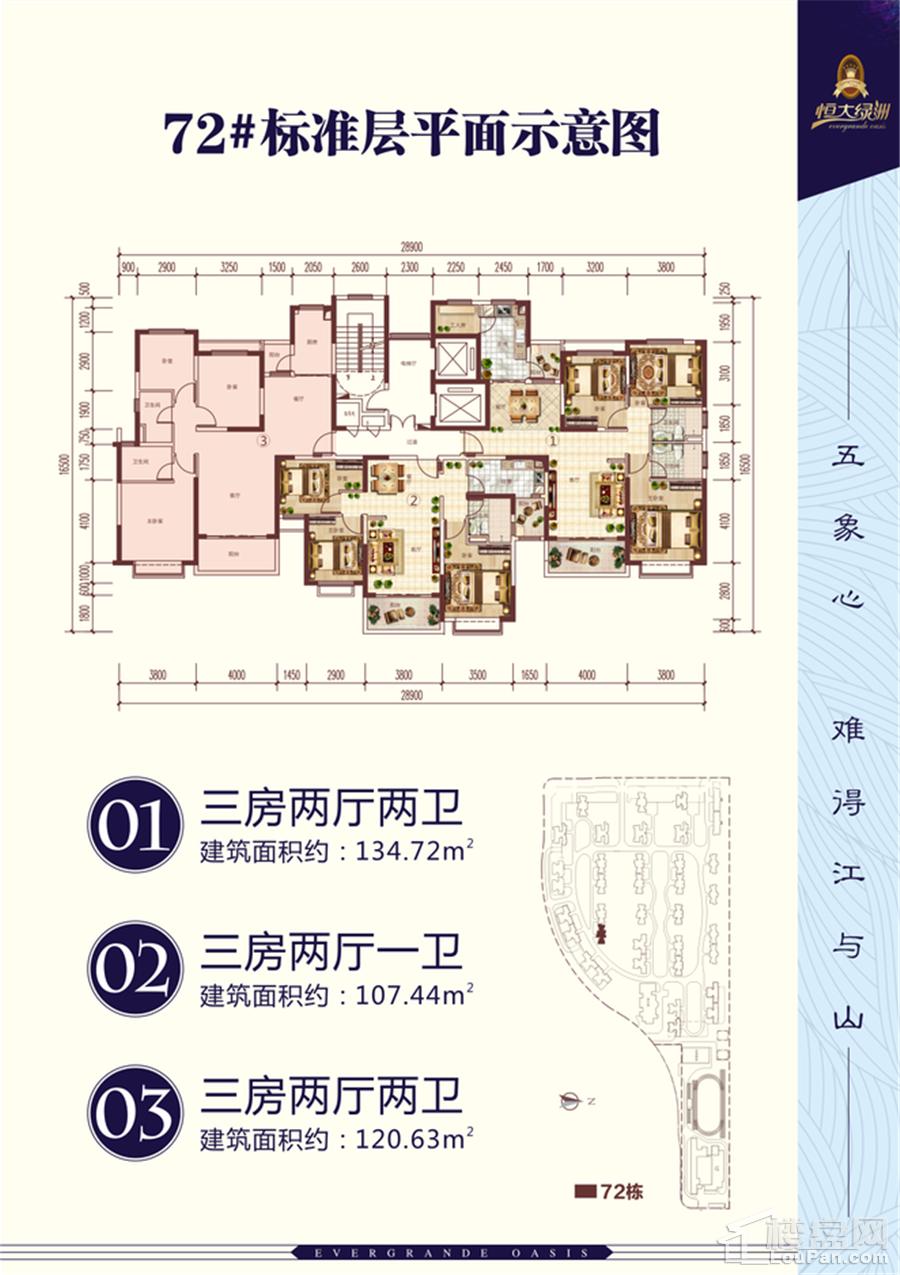 南宁恒大绿洲72#楼平面图