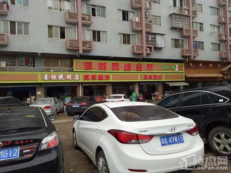 锦天金岸雅苑实景图