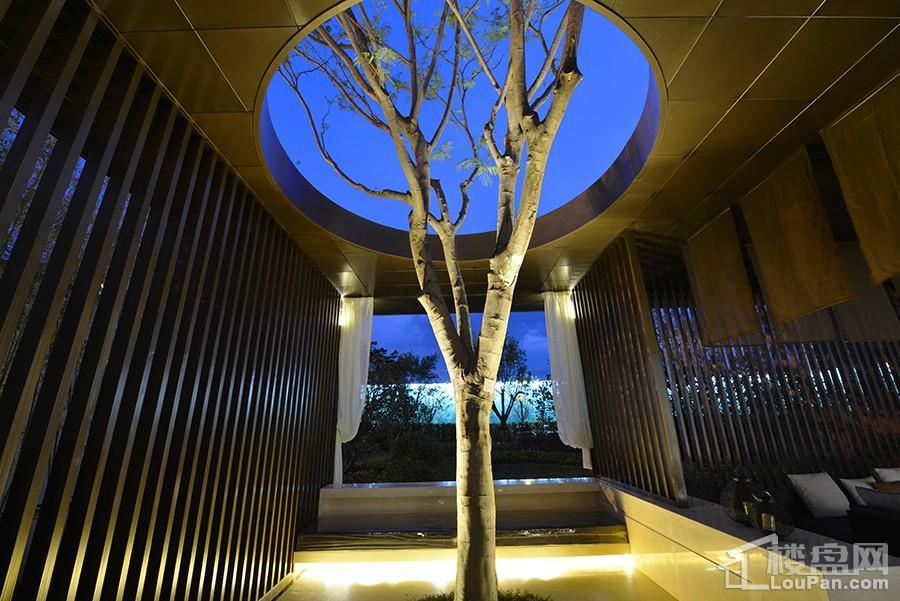 澜月府园林展示区实景图
