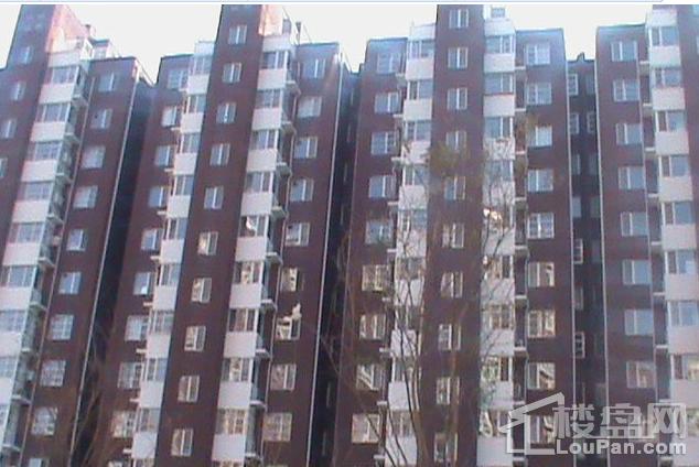滨河新东城 实景图