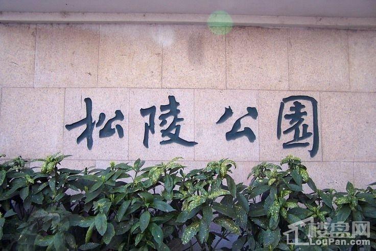 苏高新地产天城花园配套图