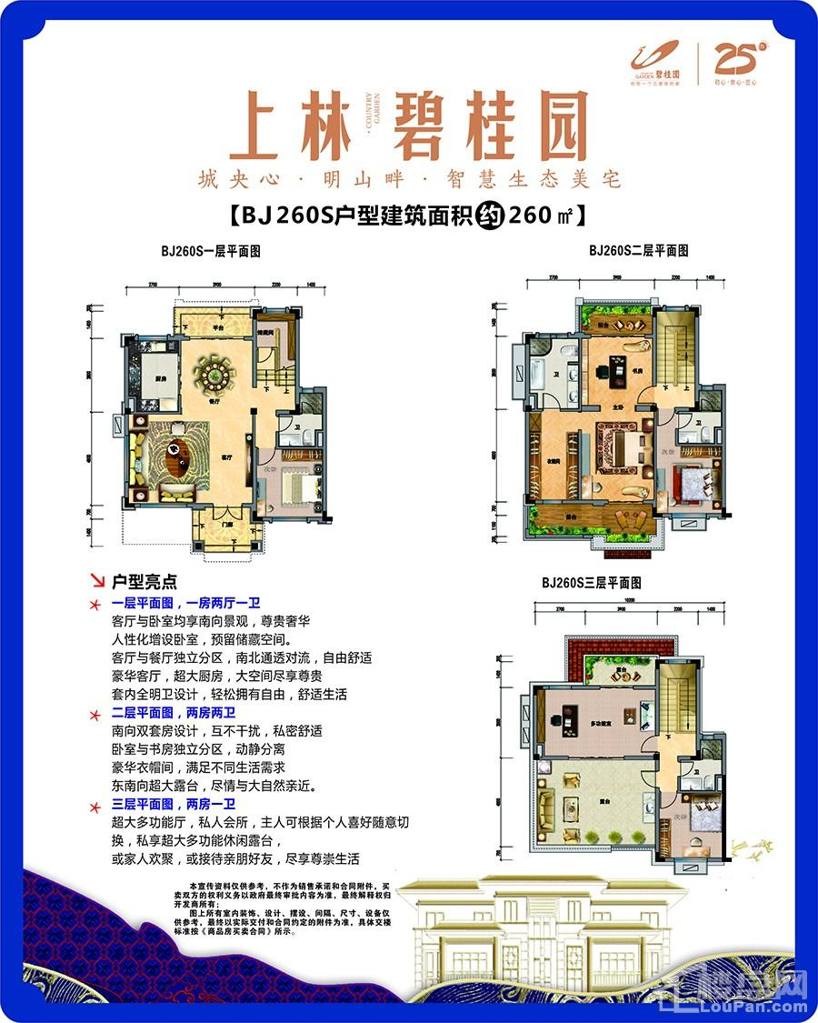 上林碧桂园BJ260S别墅户型
