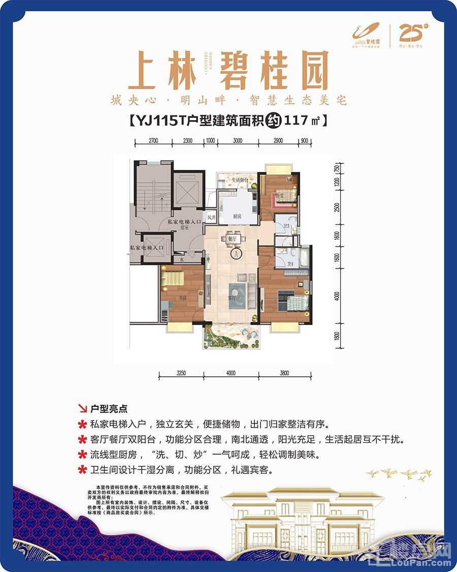 上林碧桂园YJ115T户型