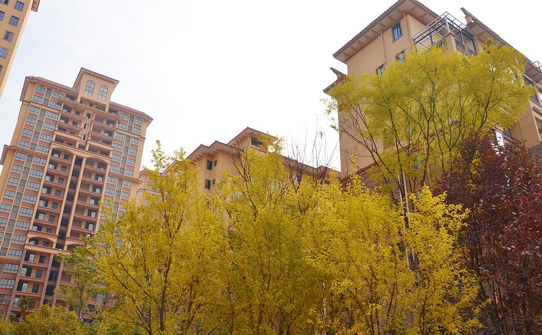 东欣·彩虹城 实景图