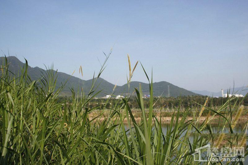 海南万科湖畔度假公园配套图