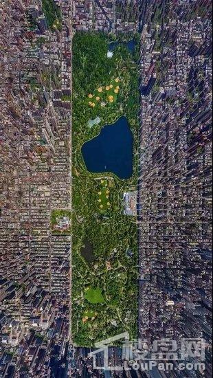 在苏州也能感受纽约曼哈顿住区的生活?你没看错!