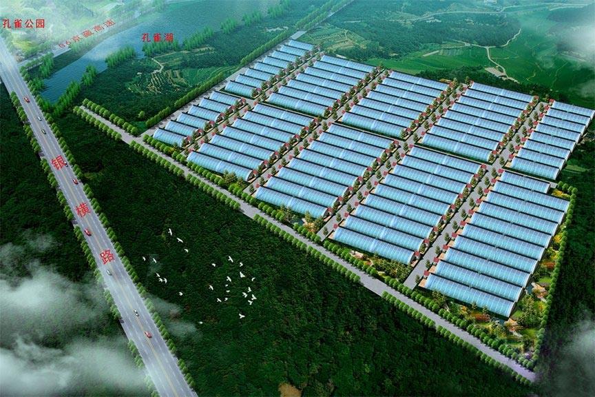 孔雀湖生态种植园