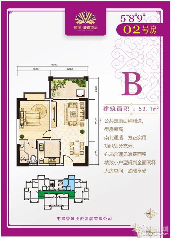 誉铖·康郡尚品B-02户型图