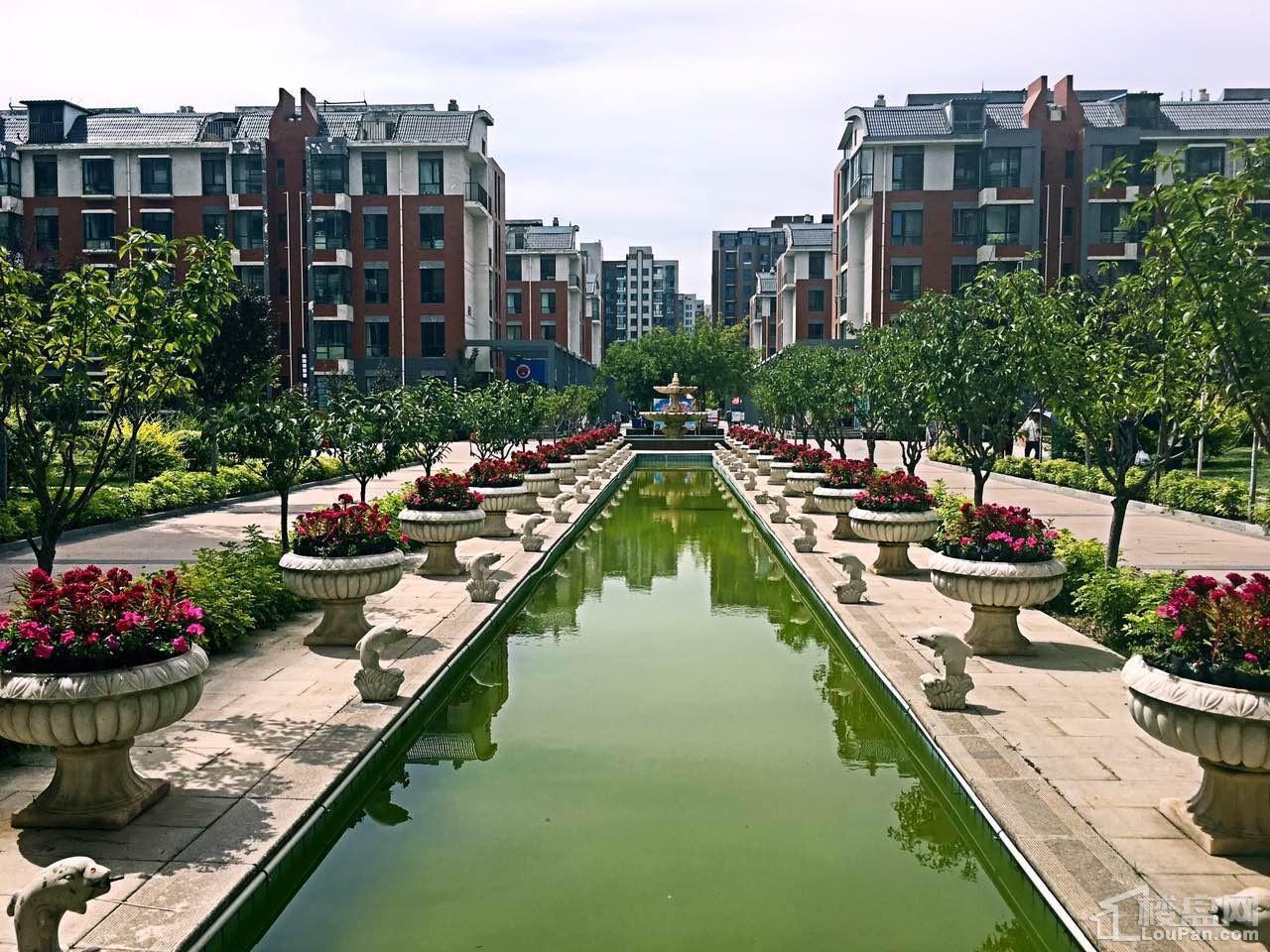 领世湖城实景图
