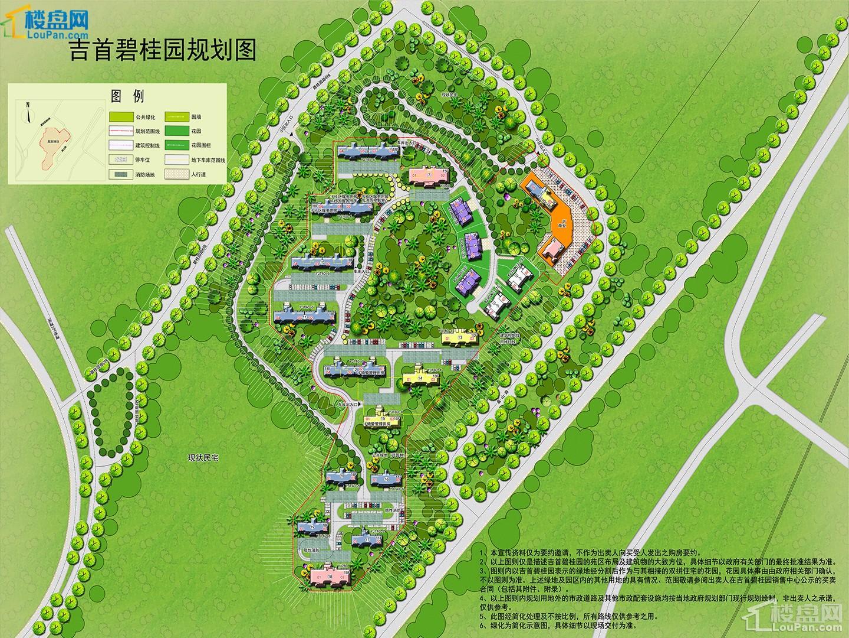 碧桂园规划图